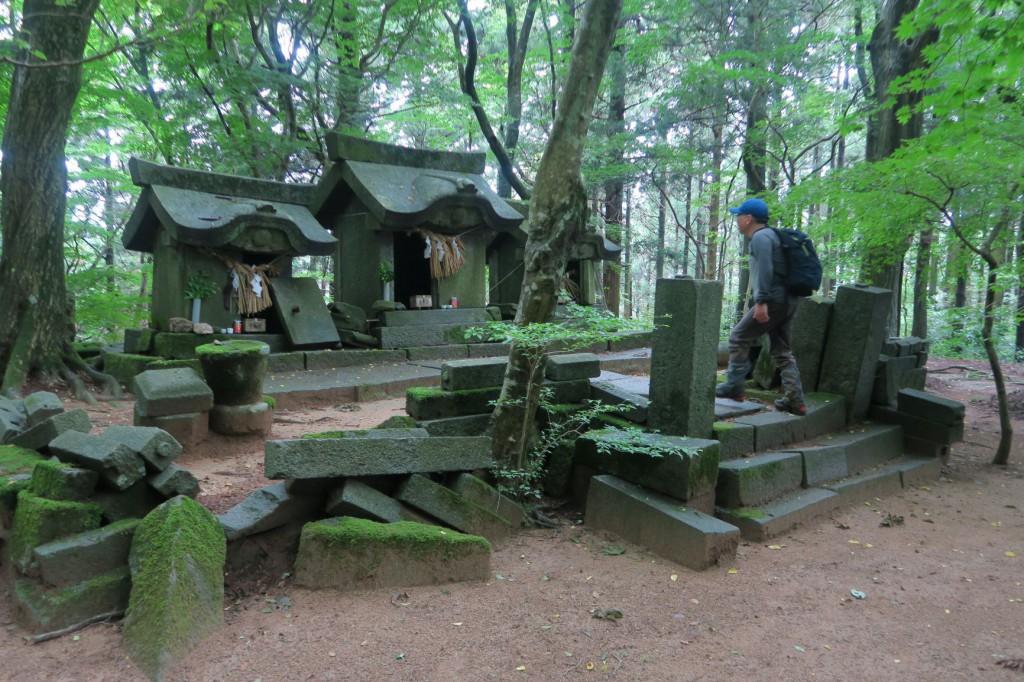 「雷神社中宮」樹林の緑が美しい。